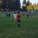 SV Eagles Training